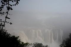 Iguazu National Park Brazil - 031