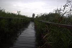 Parque nacional del Hortobágy