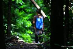Parque nacional Carara