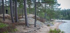 Parque nacional Tiveden