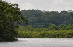 Pongara National Park