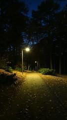 Mill Mountain Park night