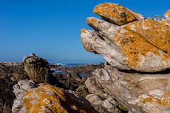 Cabo das Agulhas