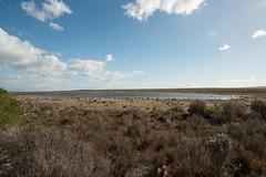 Reserva Natural de De Hoop