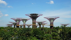 20170405_155940 Gardens by the Bay