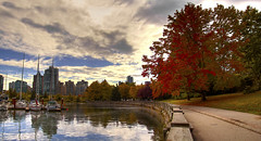 Stanley Park in Fall
