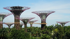 20170405_160147 Gardens by the Bay