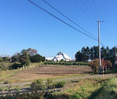 Hokkaido dairy farm.