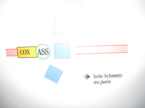 cox in ass = no pain ... hmm, i don't think so! | by Paul Tarjan