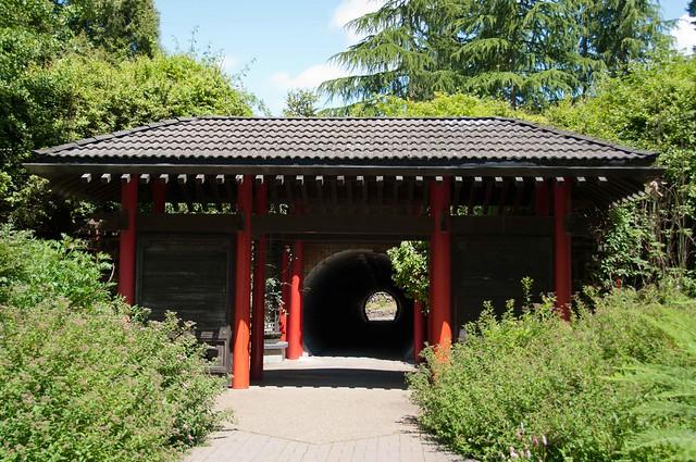 UBC Botanical Garden-3