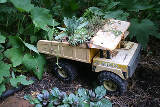 Kids' dumptruck as succulent planter | by Gardening Solutions