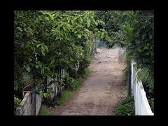 6th Lane by aznym