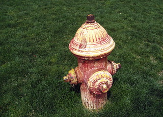 A Holy Fire Hydrant! A dogs dream! | by Frank Gruber
