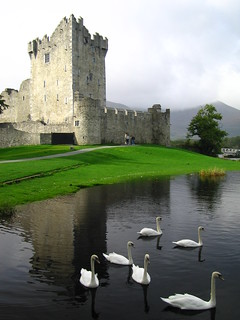 Ireland - Ross Castle | by V for Photography