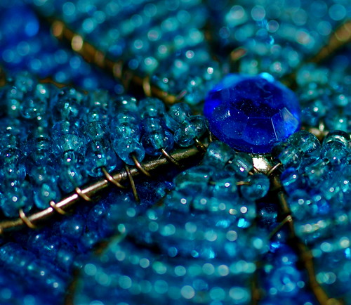 Blue Jewels | by Gaetan Lee