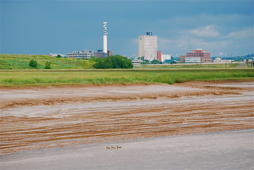 Moncton and the Petitcodiac River | by Stephen Downes