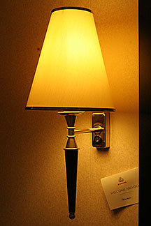 Our Pet Lamp | by panopticon