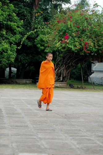 Young Monk | by Sean Paul Kelley