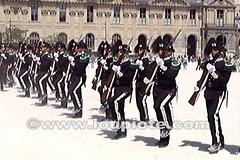 Norwegian Royal Guard in Paris (Video) - Military Parade by loupiote (Old Skool) pro