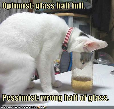 funny-pictures-cat-has-a-half-full-glass.jpg