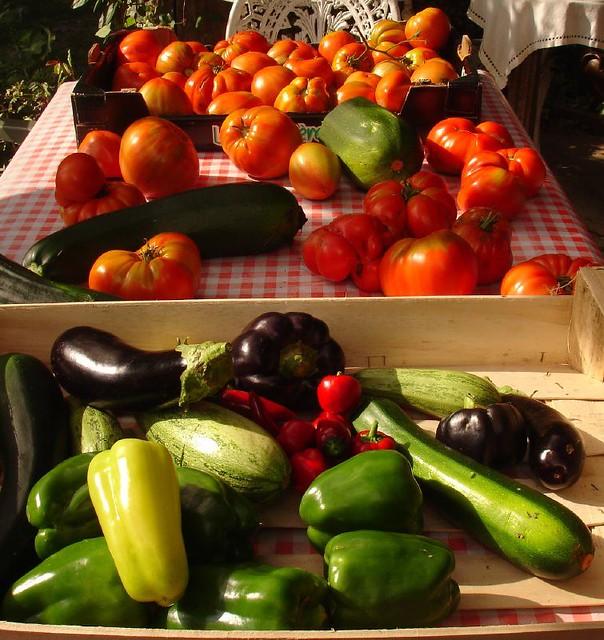 Potager Garden Blogs: Potager Or Permaculture Kitchen Garden