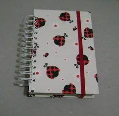 Agenda permanente by Ana Paula Louvem - Atelier Doce Sabor