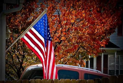 Veterans Day | by Vox Efx