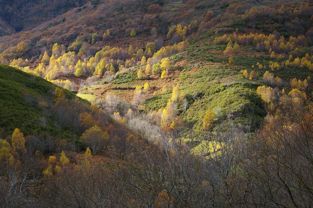Outono no Courel