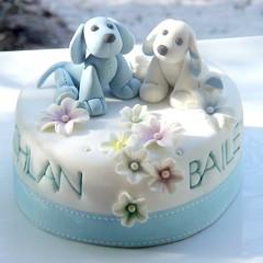 Lachlan + Bailey Baptism Cupcakes a by Sugarbloom Bev