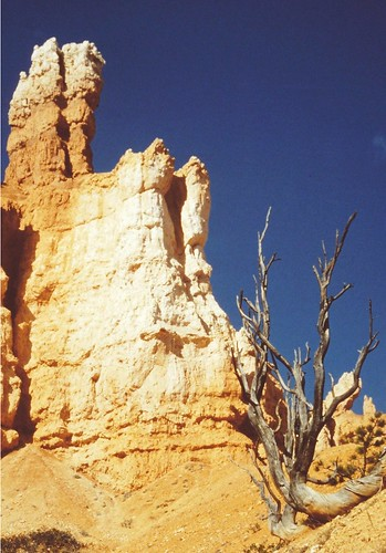 Bryce Canyon Nationalpark, Utah, USA - Hoodoos | by Batikart ... O F F !!!
