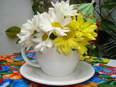 arranjo de flor em caneca de sopa by Adinoela