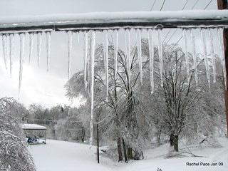 Ice Storm Jan 27-31, 2009 | by Derby City (Rachel Pace)