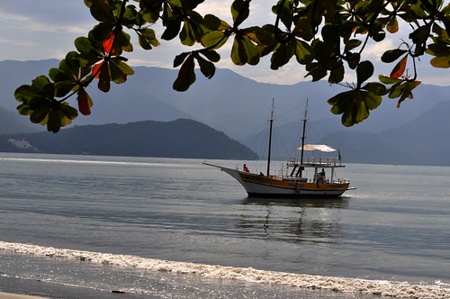 Ubatuba2 | by Environmental Artist