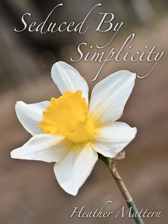 Simplicity Cover-1 | by Heather Mattern