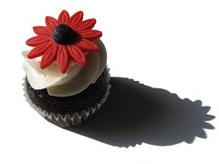 Red and Black Gerbera Daisy Cupcake | by clevercupcakes