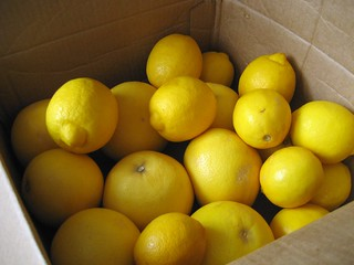 when life gives you lemons... | by Stacy Spensley