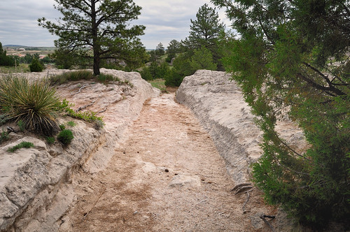 Oregon Trail Ruts | by Pete Zarria