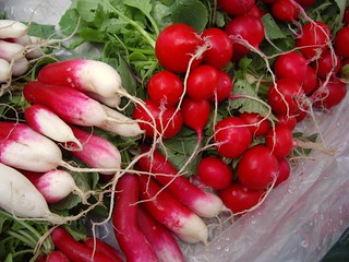 Radishes from Gillogly Orchard | by swampkitty