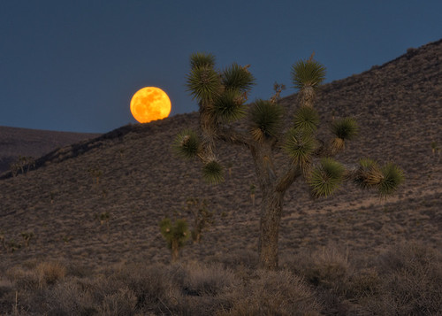 Death Valley Moonrise | by Jeffrey Sullivan