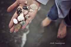 by Alieh