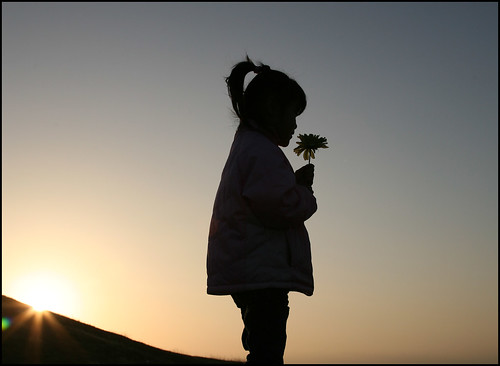 Silhouette Maddy with flower | by Donna & Andrew