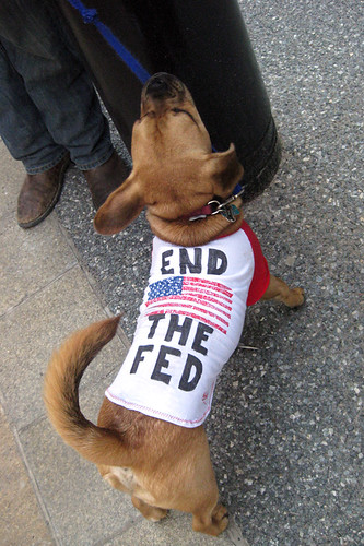 Puppies Against the Fed | by r0b0r0b