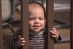 let me out! by thomas j mc