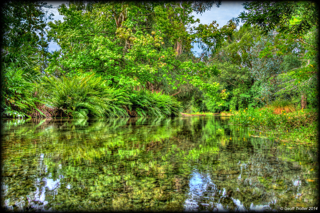 Green Stream...
