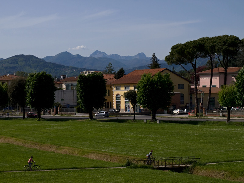 lucca60st