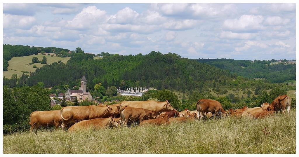 Mon village natal en Dordogne + correction 18840821279_e6058f7a01_o
