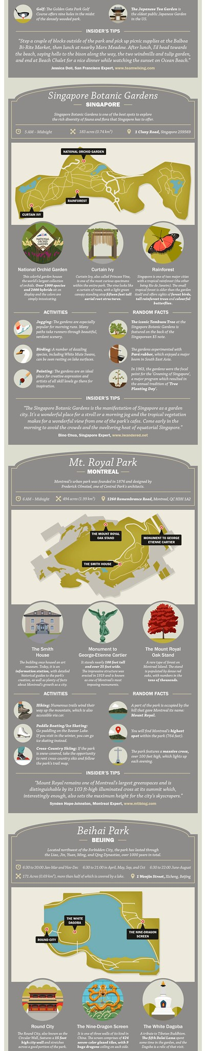 City parks infographic