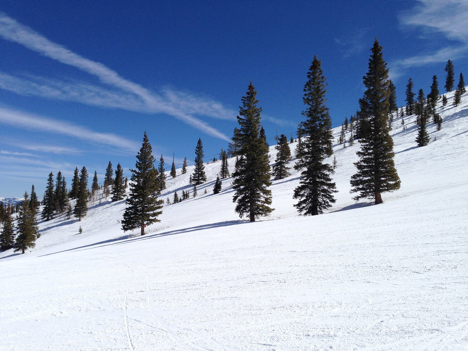 Skiing scenery at Elk Camp