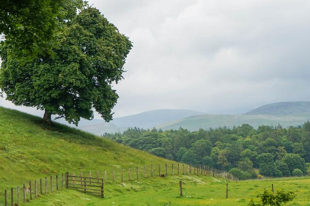 Scotland-76.jpg