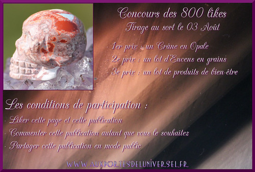 concours 800likes